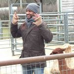 CBeebies JB with alpacas