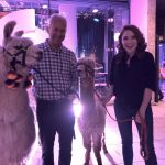 llama and alpaca with angela scanlon