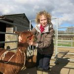 husbandry at Spring Farm Alpacas
