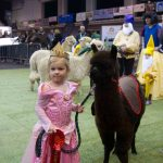 Junior handler at the BAS National 2016