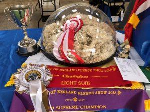 Supreme champion fleece at the Heart of England 2018 fleece show