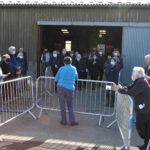 South of England Alpaca Show