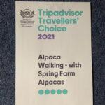 Tripadvisor Travellors' Choice 2021 Award for Alpaca walking with Spring Farm Alpacas